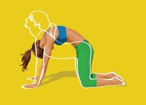 yoga cat cow