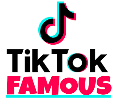 So You Want to be TikTok Famous