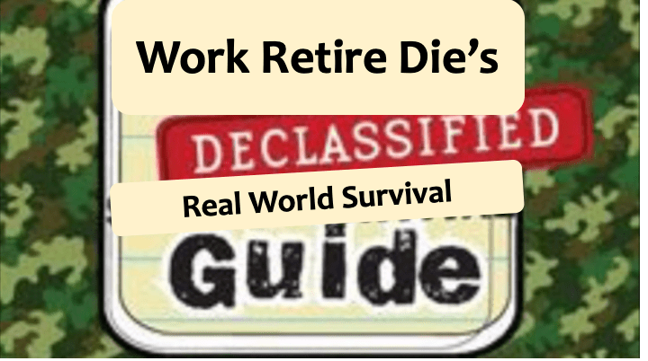 Work Retire Die's Recent Grad Survival Guide: How to Thrive in the Real World