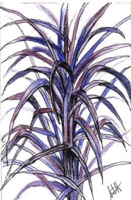 Purple Grass by Susi Hall