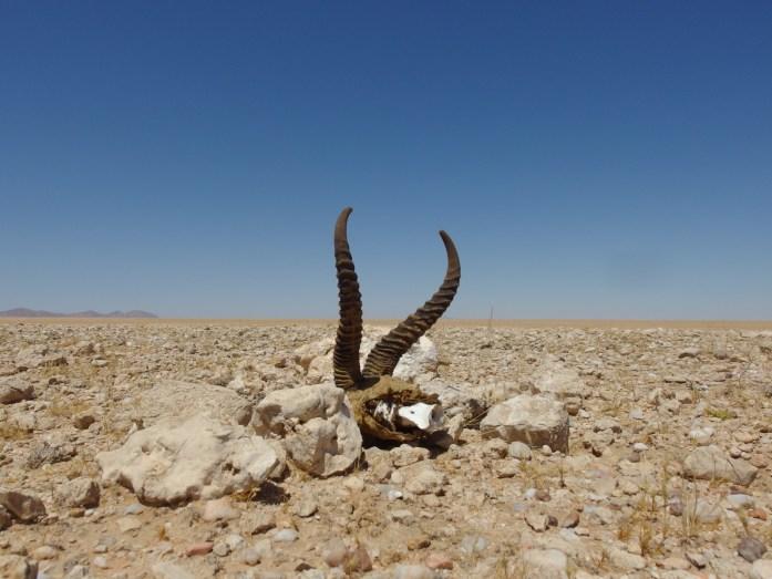 Namib-Naukluft NP