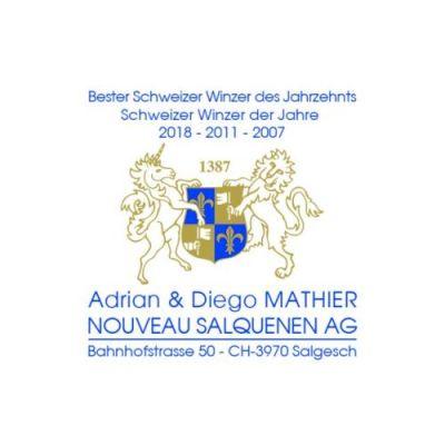 Adrian & Diego Mathier Nouveau Salquenen AG