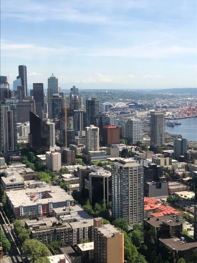 The Best of Seattle in Just Two Days: View from the Space Needle