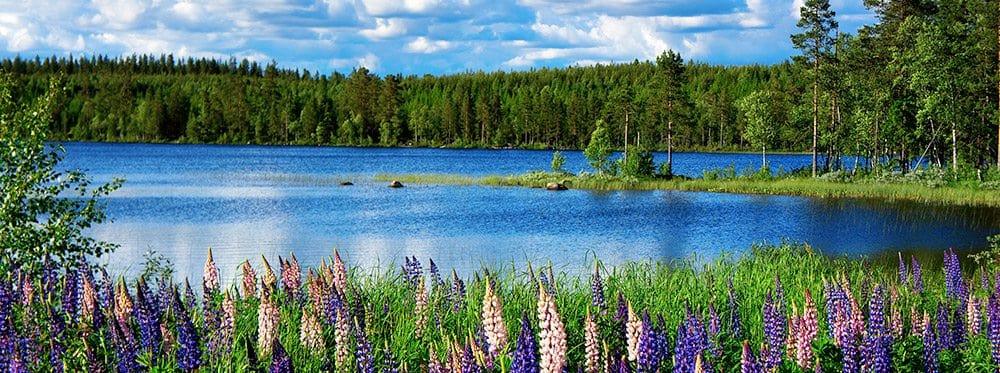 Best-Sweden