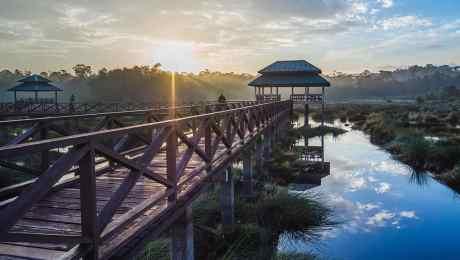 Featured-Image_Brunei_1920x716