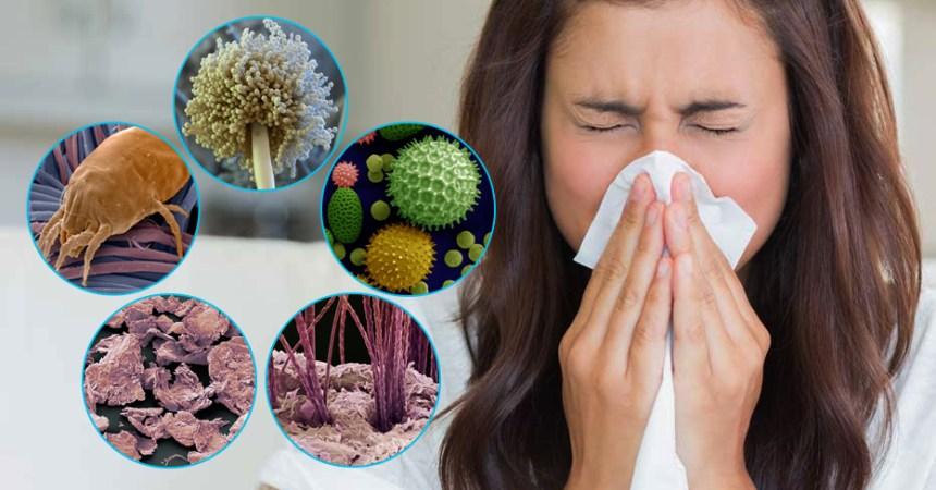 Перекрестная аллергия. Виды и лечение