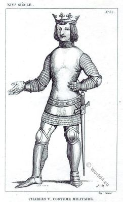 Knight. military costume. 14th century. Charles V. Le sage.