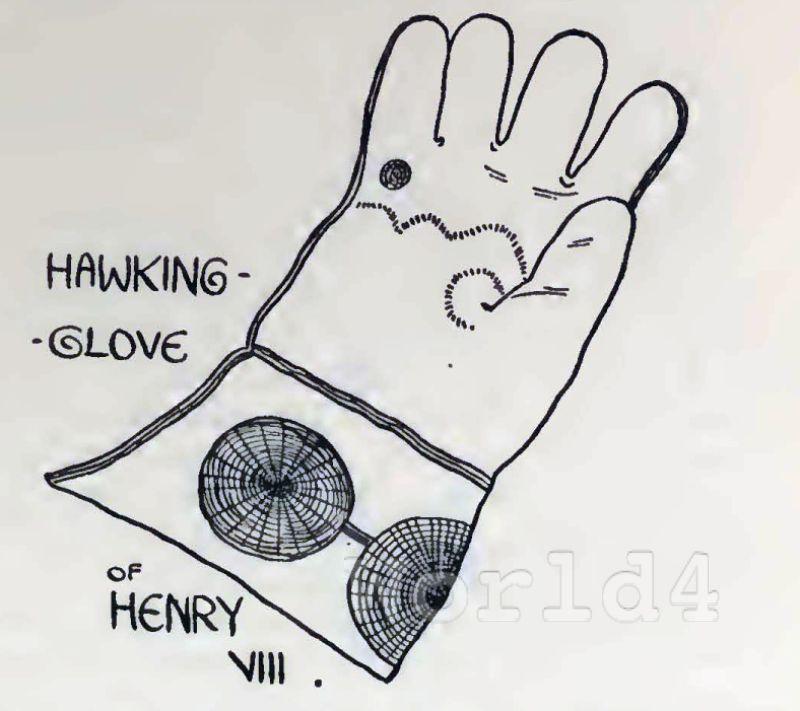 glove, Henry VIII, fashion history, england