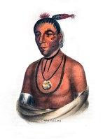 Wa-Kawn, a Winnebago chief. American natives costumes, illustrations and portraits. Indian Tribes of North America.