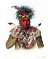 Ne-Sou-A-Quoit, a Fox Chief. Indigenous American peoples. Native Americans costumes.