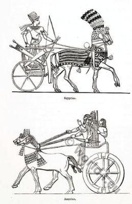 Assyria, Egypt, Charriots,