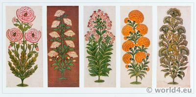 Plant Drawings. Indian Cotton Printers. Pattern Book. Traditional Indian fabrics textil design