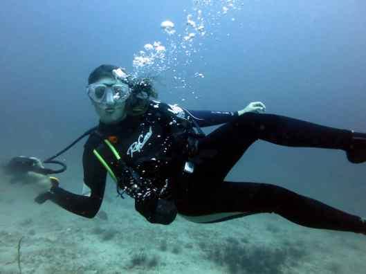 Zen underwater in Koh Tao Thailand