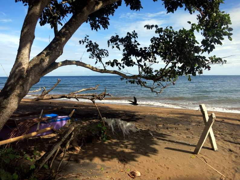 Beach dive spot San Miguel Dauin Negros Philippines