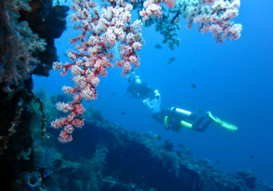 Diving in Tulamben - Liberty shipwreck - Best dive sites Bali - Indonesia