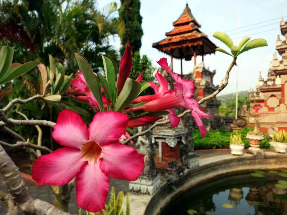 Brahmavihara-Arama Buddhist Temple - Bali road trip itinerary