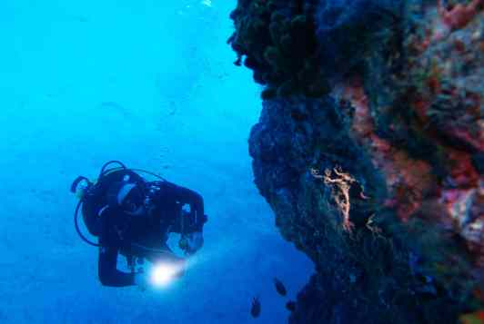 scuba diver Tenerife Canary Islands