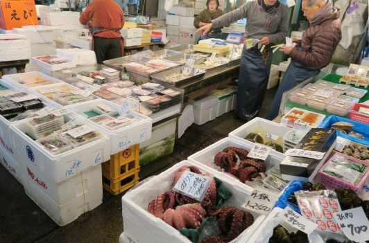 Tsukiji Market Tokyo Japan