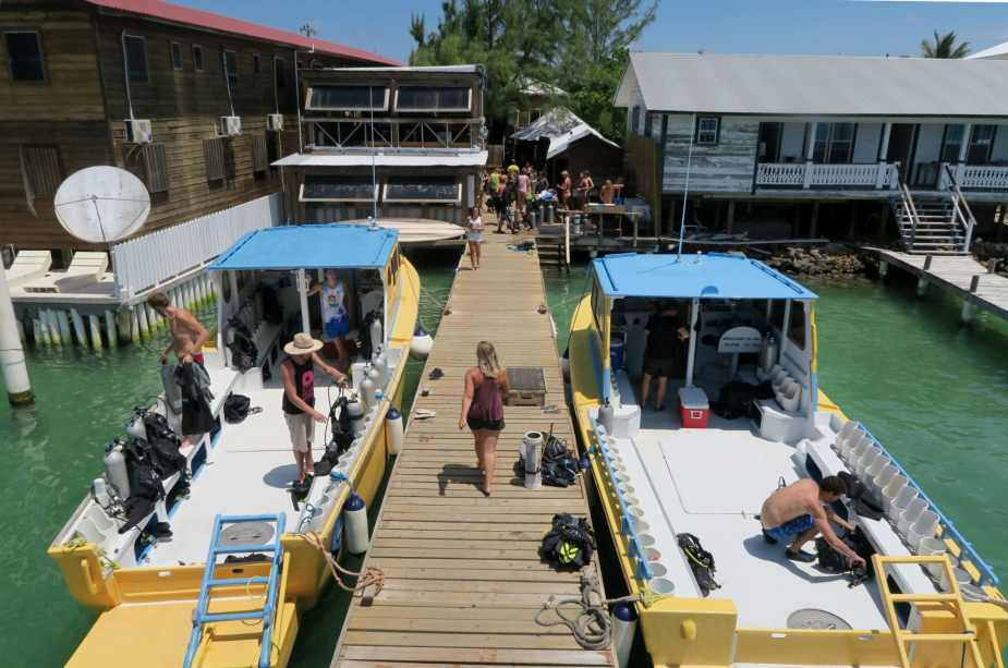 Utila Dive Center boats