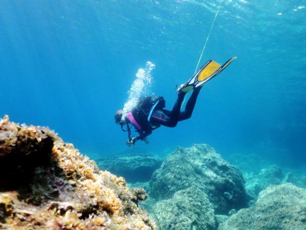 plongée Alonissos Grèce