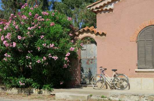 Porquerolles village French Riviera
