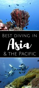 Best diving in Asia Pacific