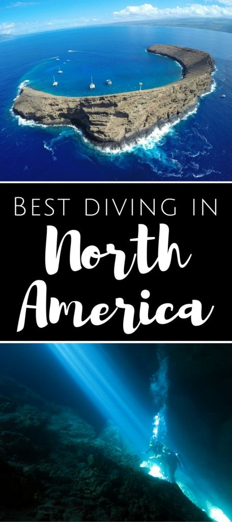 Best diving in North America