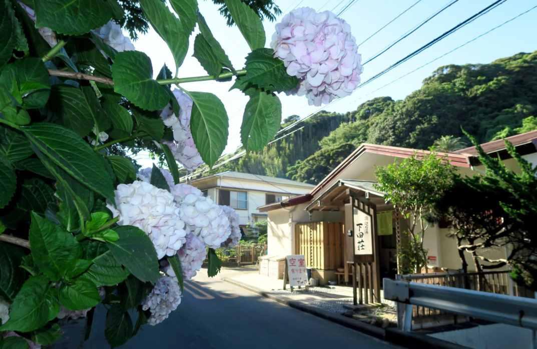 Shimodasou Guesthouse Sotoura Beach Shimoda Izu Peninsula Japan