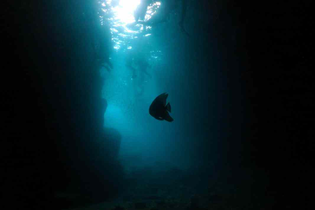 Scuba diving Blue Cave Cape Maeda Okinawa Japan