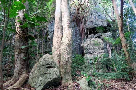 Koumac caves New Caledonia
