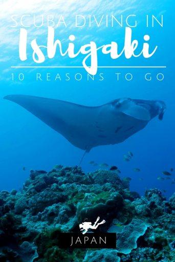 Scuba diving in Ishigaki