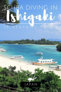 Scuba diving in Ishigaki