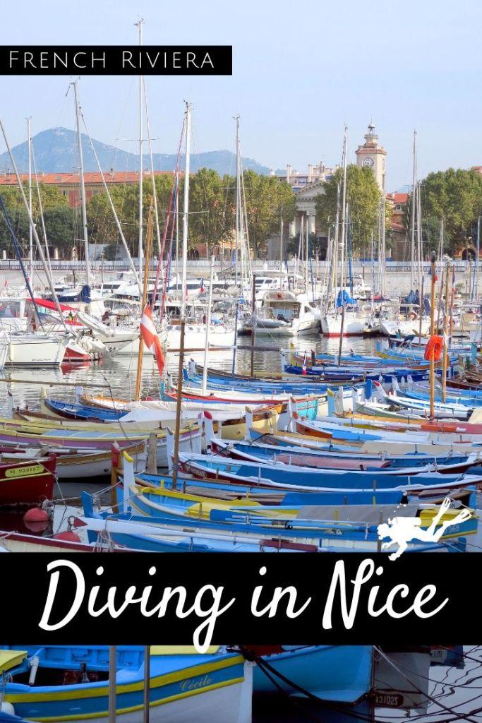 Diving in Nice pin2