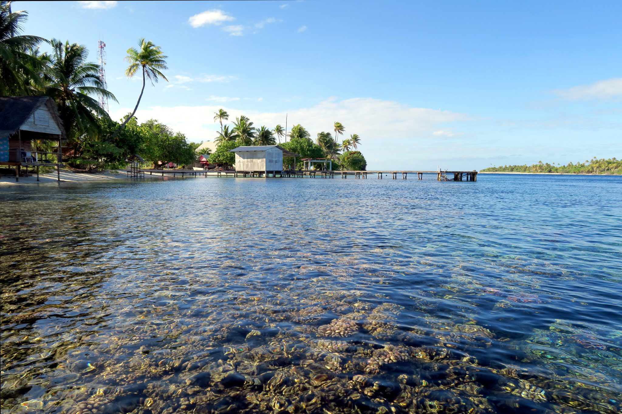 Tetamanu Fakarava French Polynesia