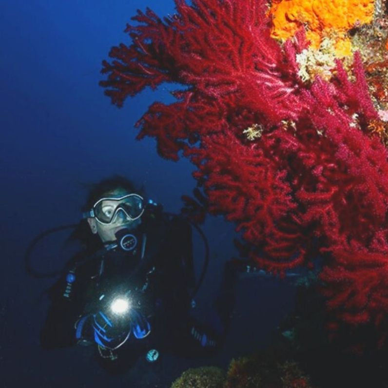 scuba diving in French Riviera INSTAGRAM