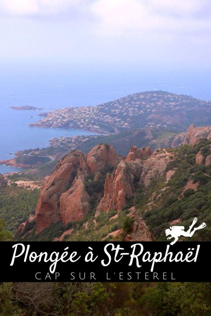 Plongée à Saint-Raphaël - Cap sur l'Estérel - pin1
