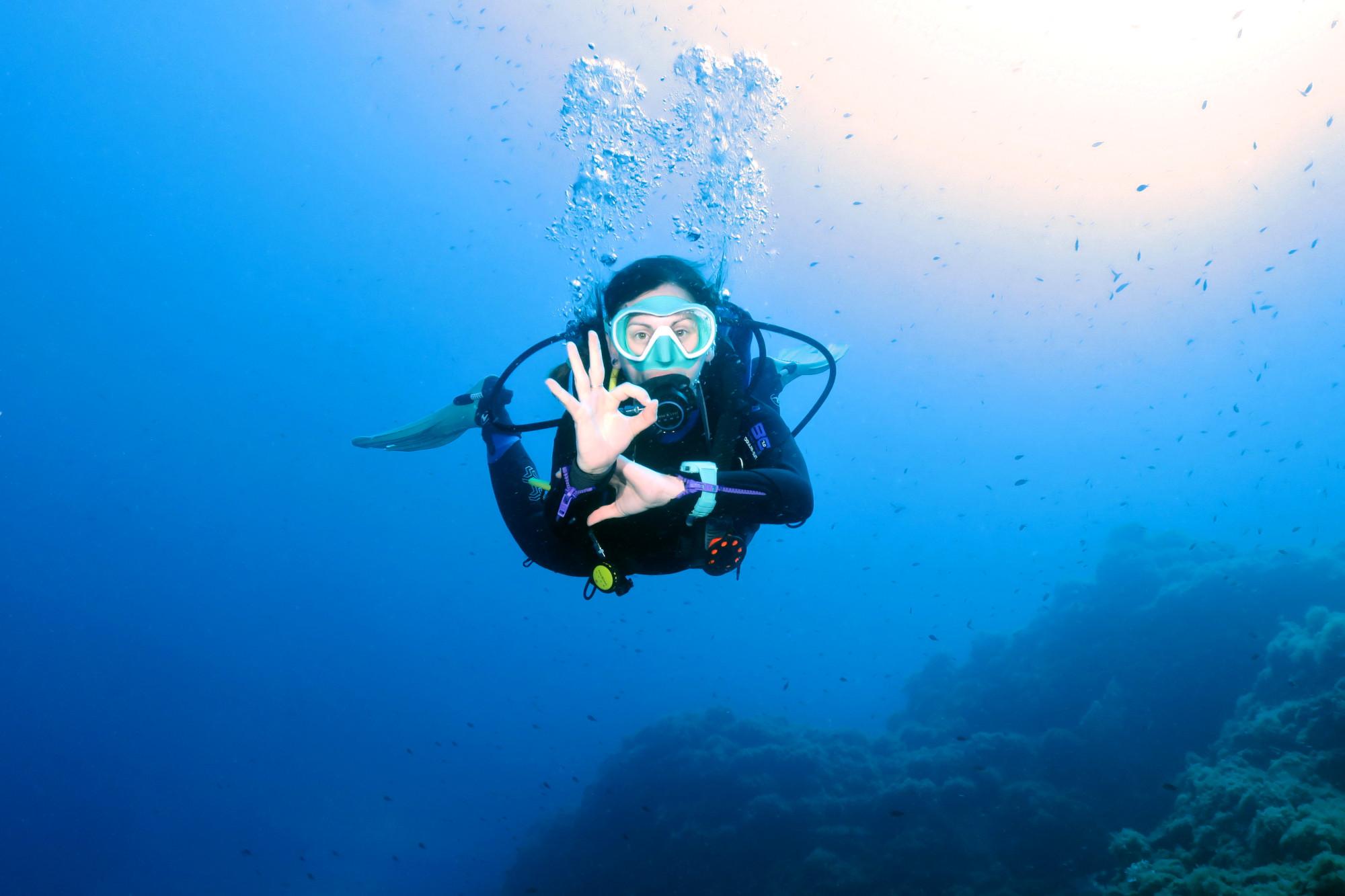 Diving in Cap Roux marine reserve - Esterel