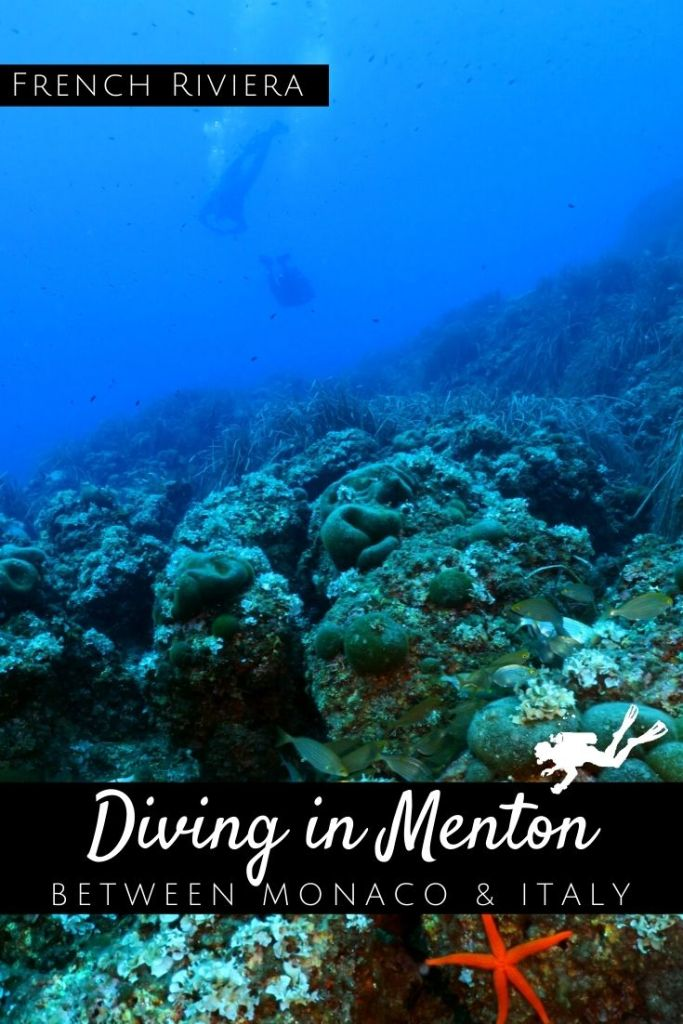 Diving in Menton pin