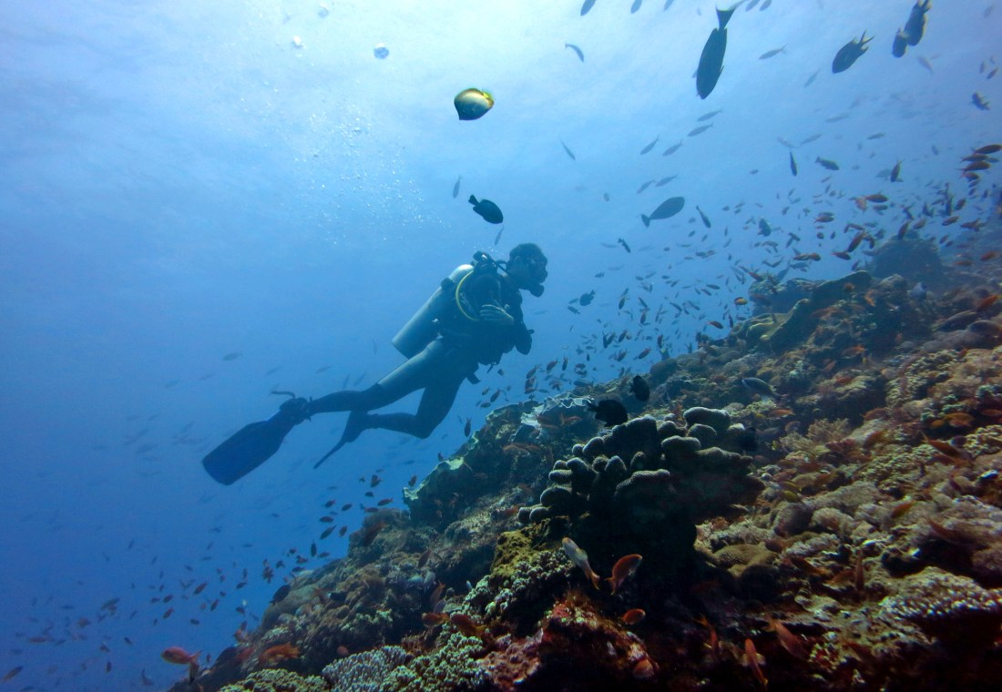 Nusa Lembongan - Best dive sites Bali