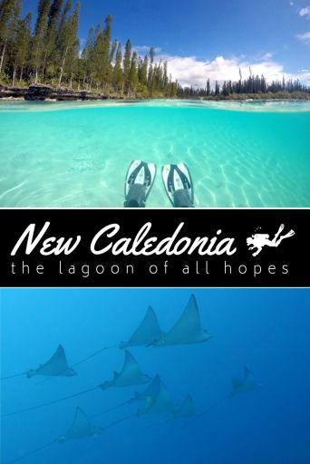NEw Caledonia Lagoon pin2