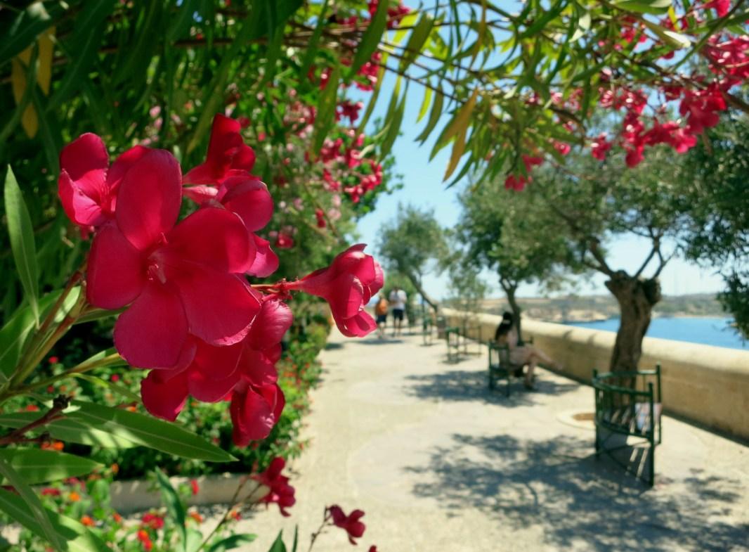 Lower Barraka gardens Valetta Malta