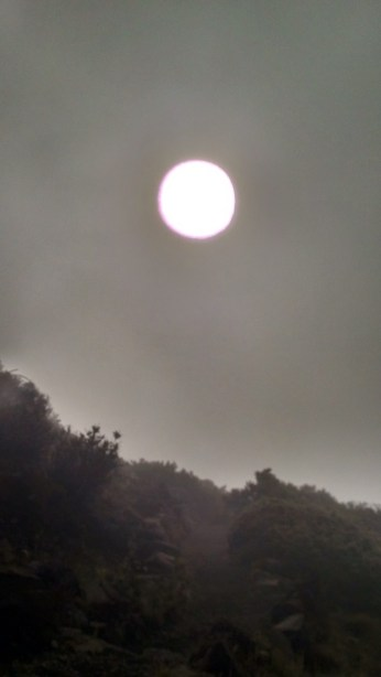 Yes, that is the sun through the fog of Leleiwi Overlook.