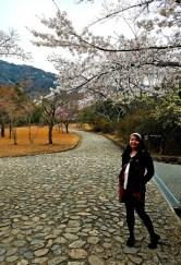 Under the cherry blossoms at Arashiyama Park.