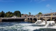 The Ballard Locks