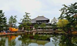 Pond behind the Great Hall of Todaiji