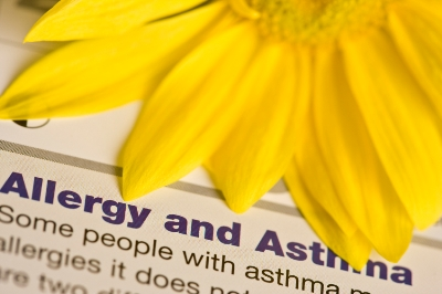 world asthma foundation banner image
