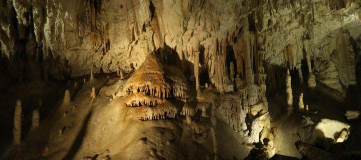 Cavegirl – die in die Höhle ging: Die Postojna Höhle in Slowenien