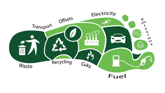 How To Reduce The Carbon Footprint