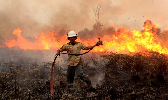 霾害風暴加劇 大馬停課 印尼森林大火 | World Digest