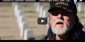 Tribute to Vietnam Veterans